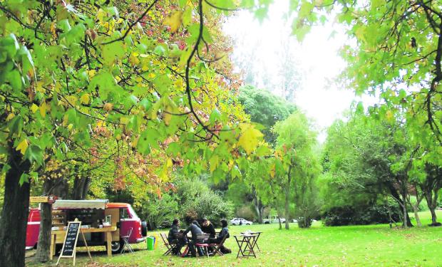 Imagen Imagen Jardin Botanico 3