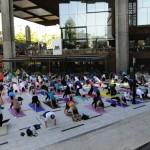 Expo Yoga 2014 con una clase que se toma la Alameda