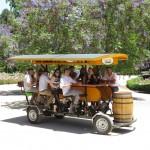 Conozca el primer bar pedaleable de Chile