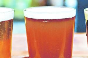 Aprender a fabricar cerveza