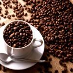 Celebrando el Día del Café