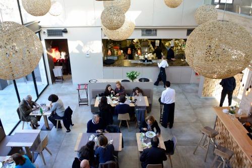 Restaurante Lobo brasserie_500