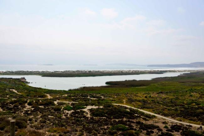 Humedal Los Vilos-13