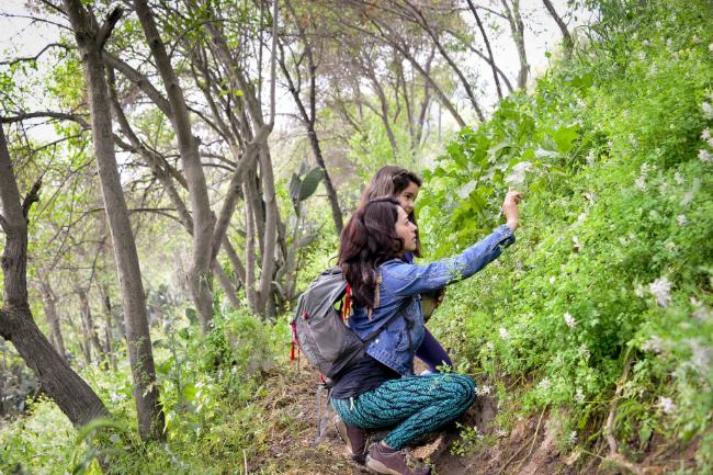 Trekking Parque Metropolitano