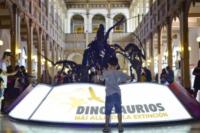 El Museo Nacional de Historia Natural_-22