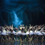 Vuelve el ballet más clásico de todos