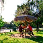 Tour fotográfico por el Parque Araucano