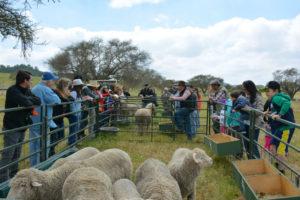 Gratis: Un día de campo en una granja orgánica