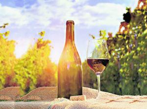 Degustar vinos australes en Villarica