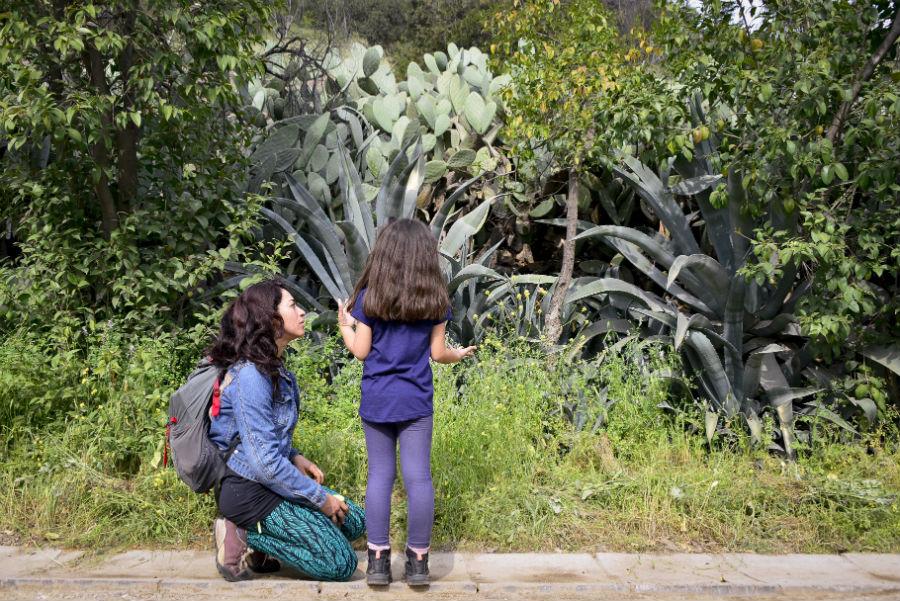 trekking con niños