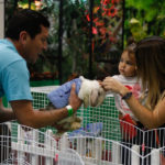 Una feria familiar con mascotas