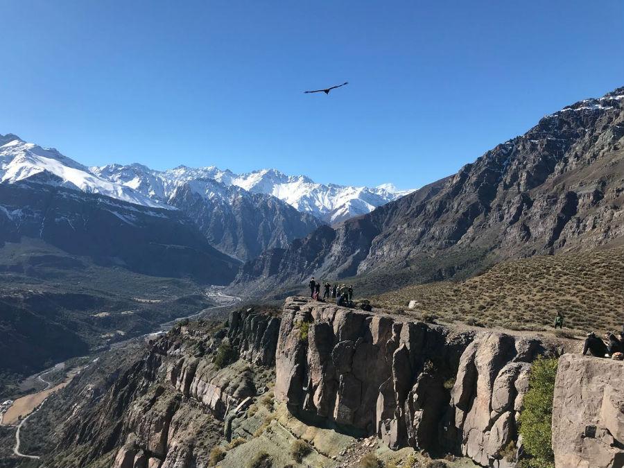 Trekking en Chile: Mirador de los Cóndores