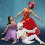 Ballet Alicia en el país de las Maravillas