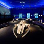 Las cuatro ballenas que nadan en el Centro Cultural La Moneda