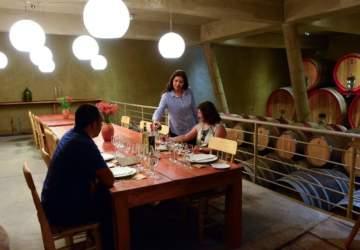 Siete viñas de Chile perfectas para visitar este fin de semana largo