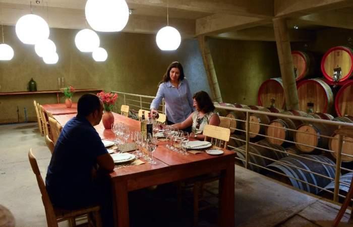 Ocho viñas de Chile perfectas para visitar durante todo el año