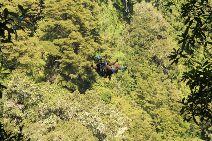 Canopy Chile