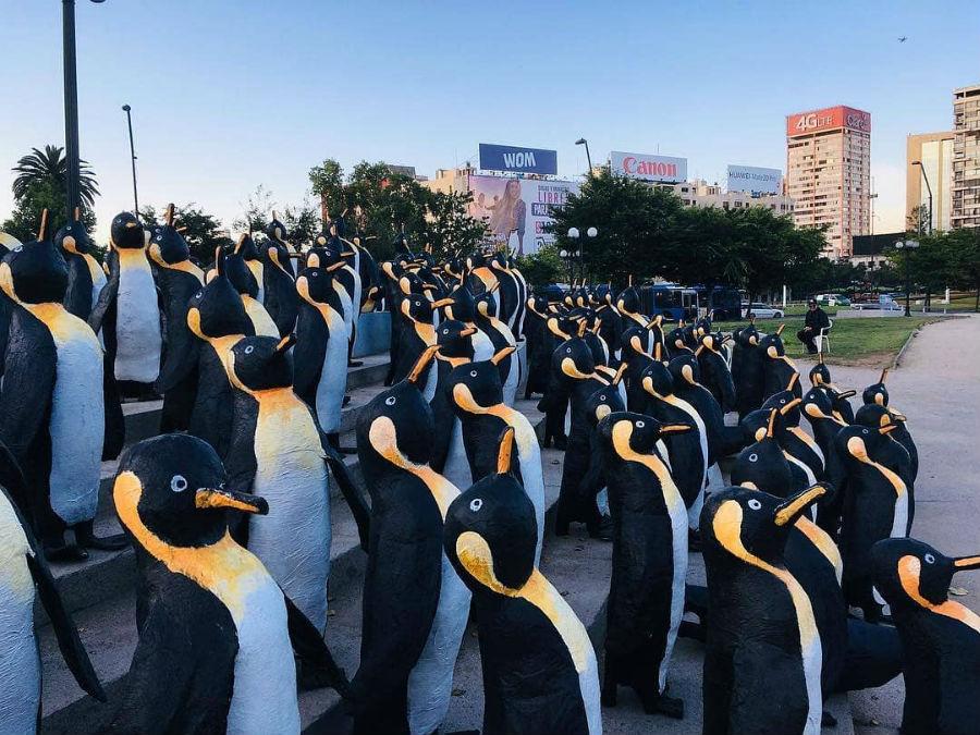 ¿Por qué hay un millar de pingüinos en Plaza Italia?