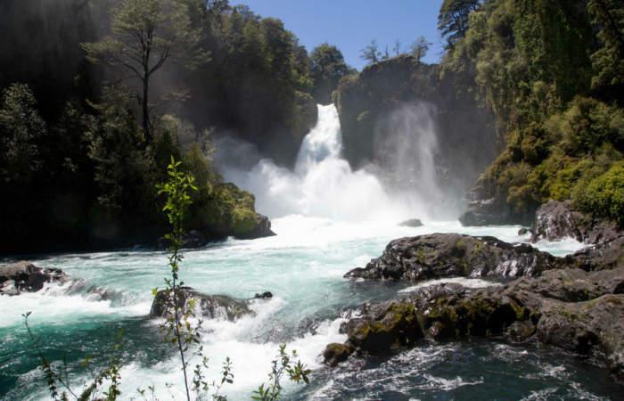 Huilo Huilo, la maravillosa reserva biológica que tiene bosques hechizados