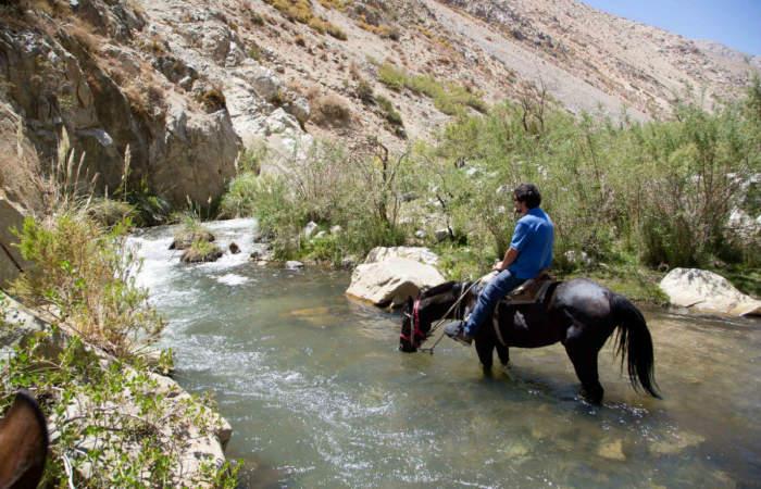 La cabalgata que te lleva por los lugares más desconocidos en lo alto del Valle del Elqui