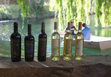 Cavas del Valle, la viña boutique del Valle del Elqui que puedes recorrer y degustar gratis