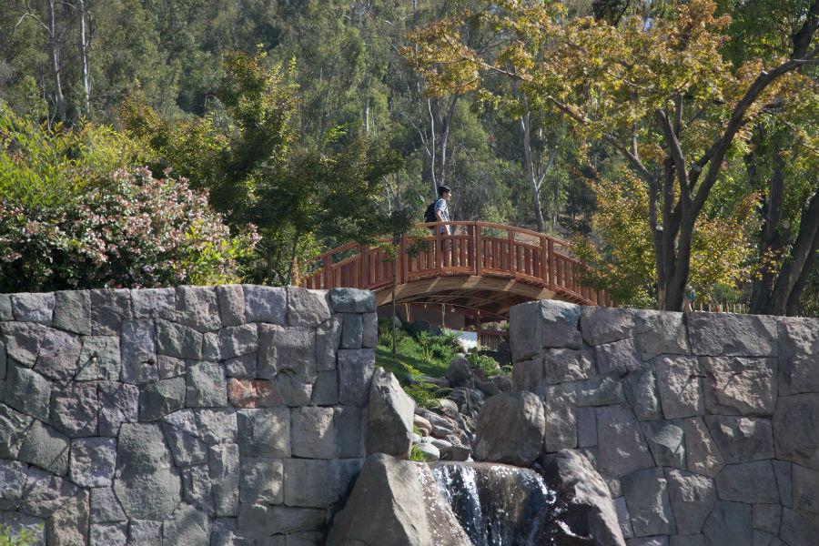 Jardín Japonés Parque Metrolitano