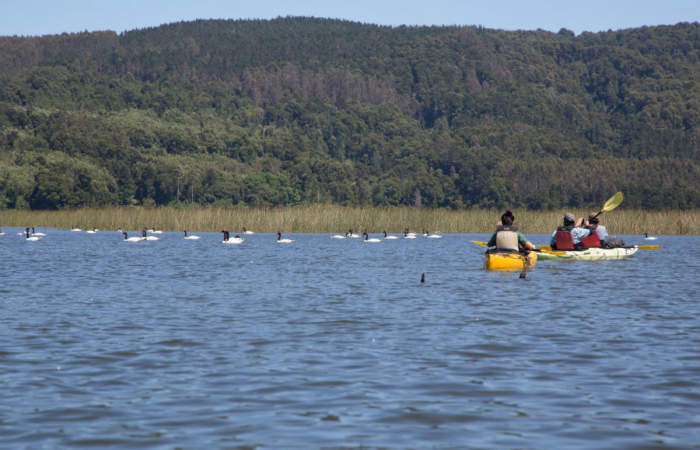 4 sorprendentes lugares para navegar en kayak en Chile