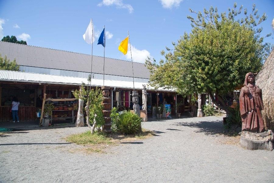 Feria Asociación Wenteche Mapu