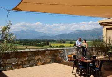 10 viñas de Chile perfectas para visitar durante todo el año