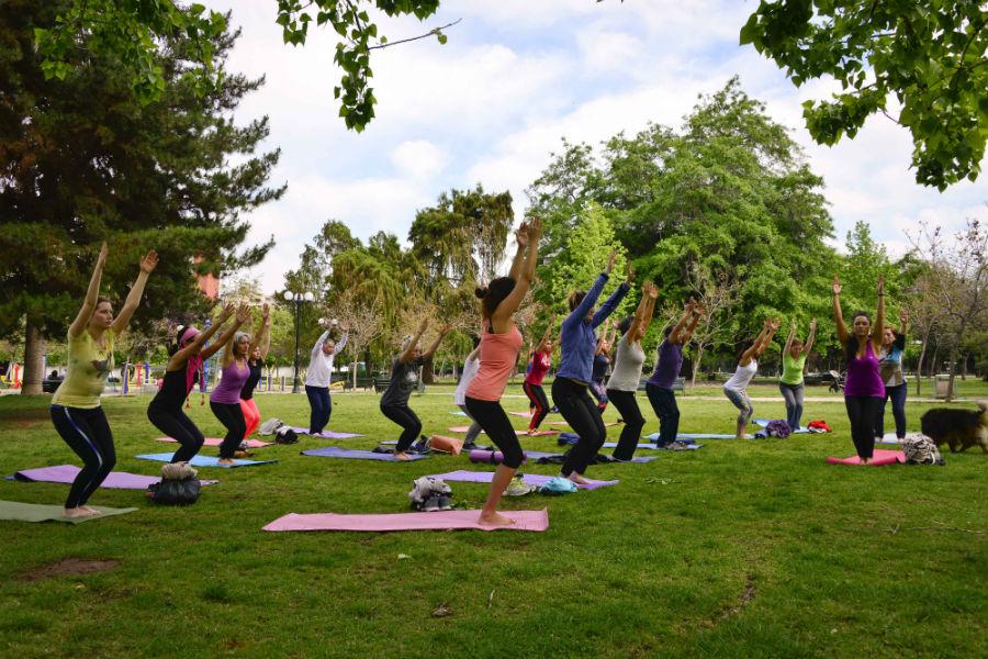 Gratis: Yoga, juegos y Djs en el Jardín Botánico de Viña del Mar