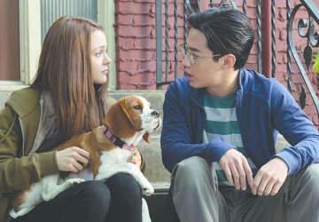 La Razón de Estar Contigo: Un Nuevo Viaje: El reencuentro con el fiel perro Bailey