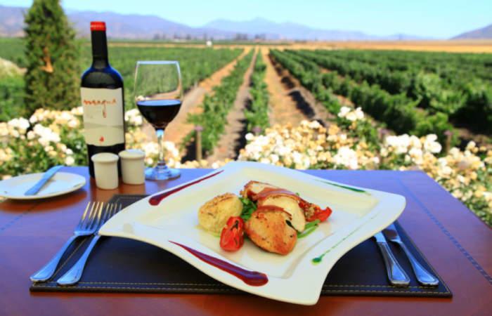 Escaparse a Casablanca, el paraíso del vino y la comida a 45 minutos de Santiago