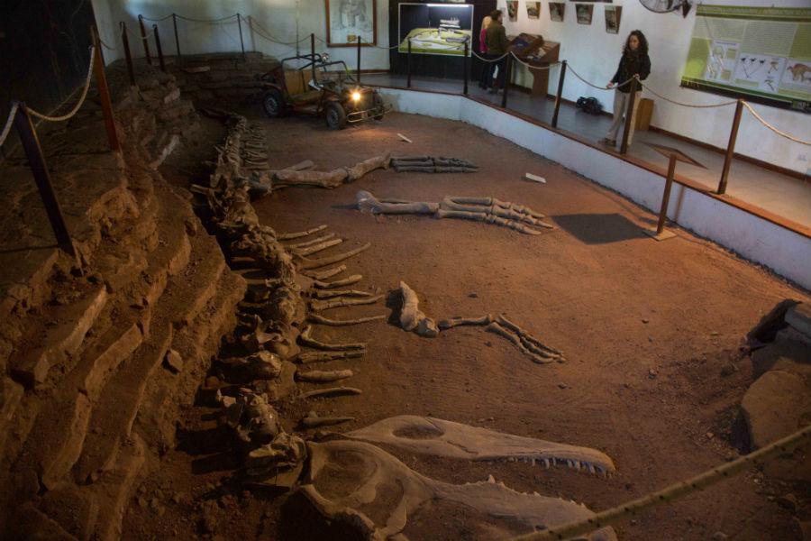 Museo Villa El Chocón.
