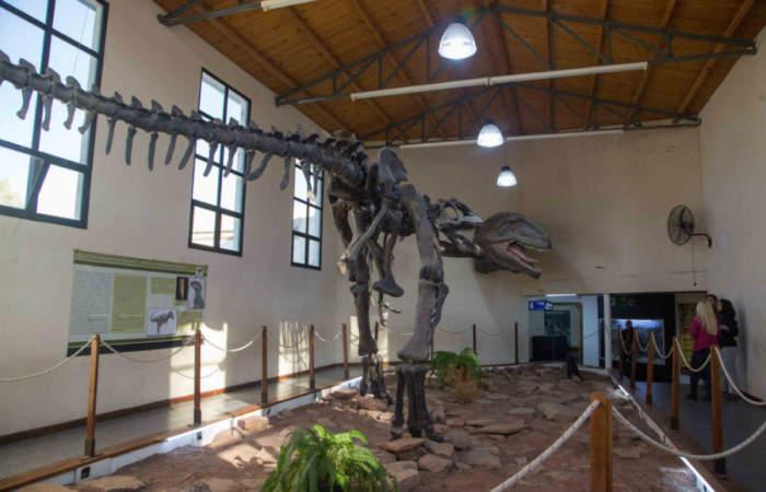 El museo donde puedes ver el dinosaurio carnívoro más grande del mundo