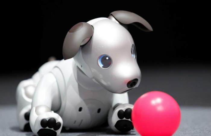 En el Festival del Robot podrás interactuar y jugar con las máquinas más sorprendentes