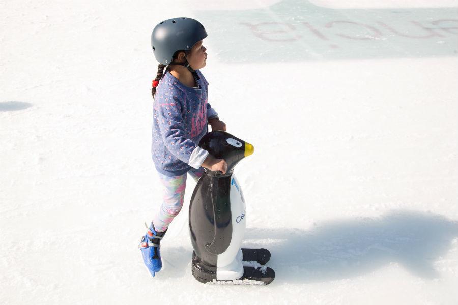 Patinaje en hielo