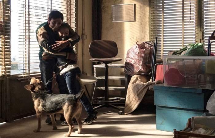Dogman: Cuando la ingenuidad se enfrenta a la violencia