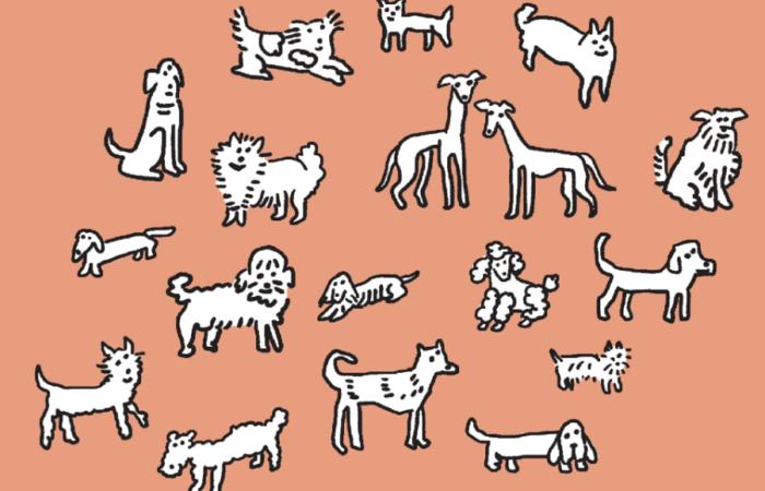 Solo necesito un perro, el libro que se convertirá en la guía de cabecera de los doglovers