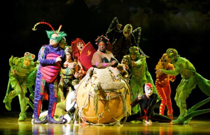 Así es Ovo, la espectacular obra del Cirque du Soleil que acaba de agregar nuevas localidades