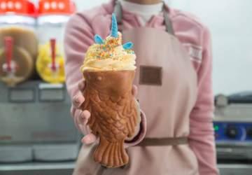 Taiyaki Scl: la primera heladería japonesa está en Bellavista