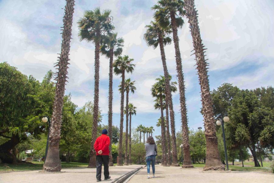 Parque Bernardo Leighton 3
