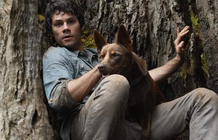 Amor y monstruos: el entretenido relato sobre supervivencia y descubrimiento que llega a Netflix