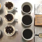Cata de té en Valparaíso