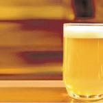 Las mejores india Pale Ale segun Mariana Martinez