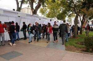 Disfrute de la Fiesta de la Vendimia en Casablanca