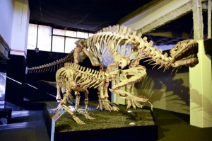 Dawn of Dinosaurs: Dinosaurios en tamaño real