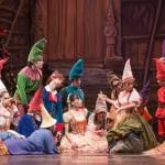 Ballet familiar en el Bicentenario