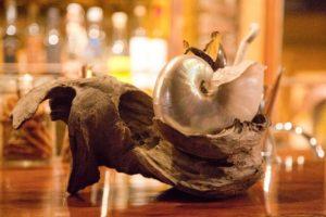Chharqu: El bar de coctelería ancestral de Peumayen