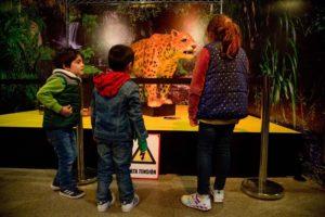 """Un """"Universo Salvaje"""" espera a los niños en la Estación Mapocho"""