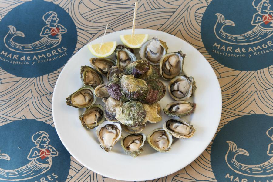 La cata de ostras que no te puedes perder en Valparaíso